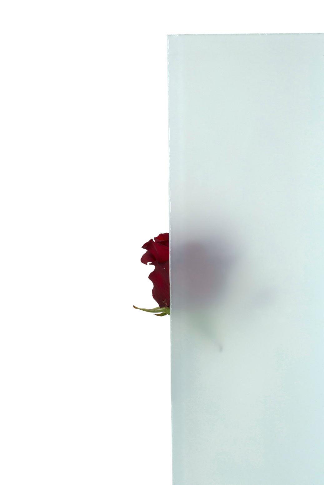 Quelle vitrage pour une cloison atelier d 39 artiste verre for Cloison atelier artiste
